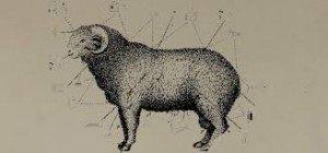 mouton-300x140 démocratie dans Psycho